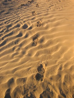 Footprints in the Sahara