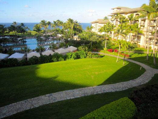 Aloha-conference
