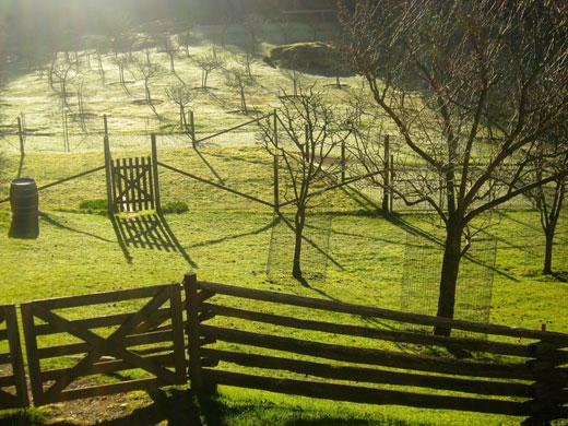 farm-gate