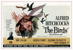 http://hitchcock.tv/mov/birds/images/birds.jpg