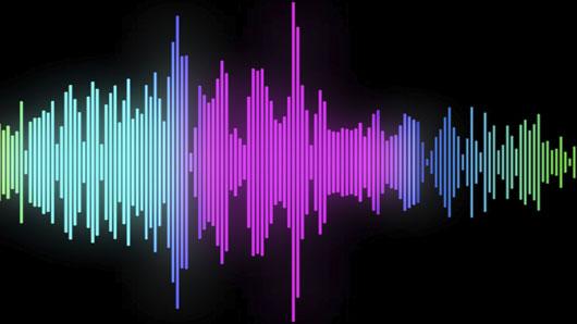 voice-print