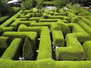 Ashcombe-Maze-Australia