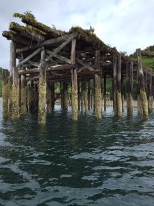 Haida Gwaii pier