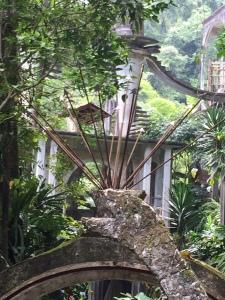 Mexico garden