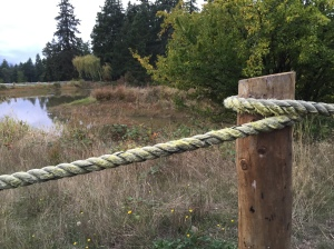 rope on post