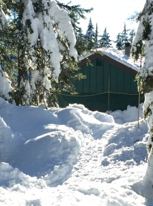 cypress snow
